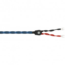 Buy Cable WIREWORLD Oasis OAB2.5M Elkor