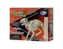Buy Educational kit EASTCOLIGHT Archaeology Hare 28205 Elkor