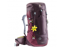 Buy Travel backpack DEUTER Futura Pro 34 SL Aubergine-Maron 3401018-5525 Elkor