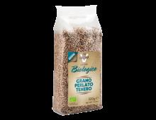 Buy Grain products VIGNOLA BIO Grano Perlato CERGRANOTENPERLBIOV Elkor