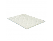 Купить Одеяло HEFEL Edition 101 2217GD  Elkor