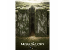 Фильм The Maze Runner The Maze Runner