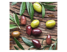 Salvetes PPD Olive Harvest Olive Harvest
