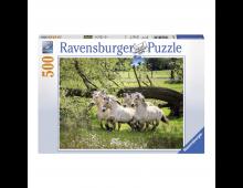 Buy Puzzle RAVENSBURGER Norwegian Fjord Horse R14772 Elkor